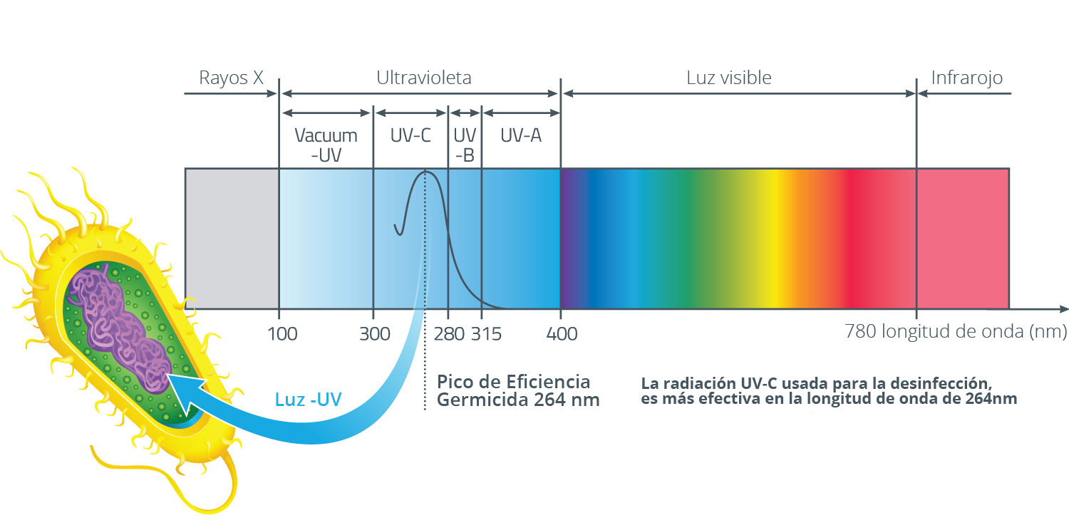 Tecnolog a ultravioleta garabi medioambiente for Luz uv para estanques